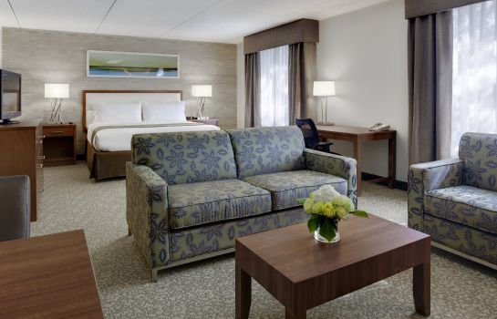 Suite DoubleTree by Hilton Ann Arbor North