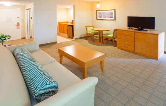 Suite Holiday Inn Hotel & Suites ALEXANDRIA - OLD TOWN