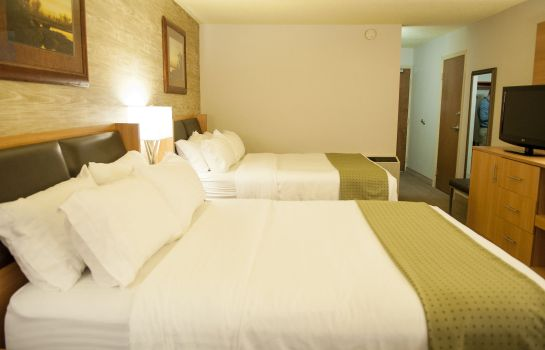 Chambre Holiday Inn SPEARFISH-CONVENTION CENTER