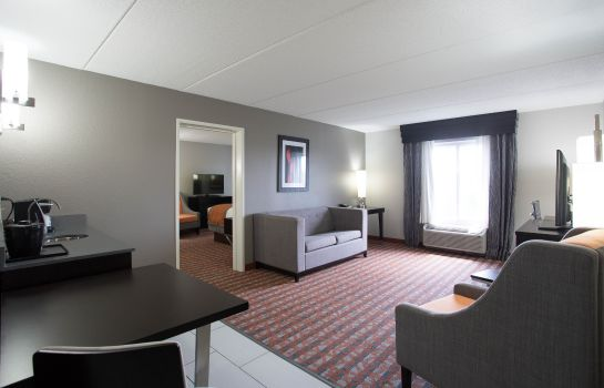Suite Holiday Inn Express & Suites NASHVILLE SOUTHEAST - ANTIOCH