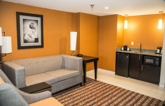 Chambre Holiday Inn Express & Suites NASHVILLE SOUTHEAST - ANTIOCH