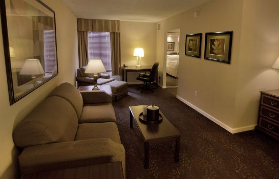 Habitación Holiday Inn BUFFALO-INTL AIRPORT