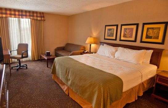 Zimmer Holiday Inn BUFFALO-INTL AIRPORT