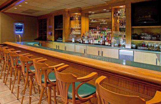 Hotel-Bar Holiday Inn CANTON (BELDEN VILLAGE)