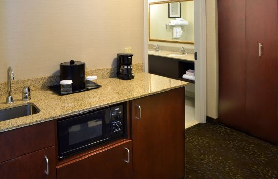 Suite Holiday Inn CANTON (BELDEN VILLAGE)
