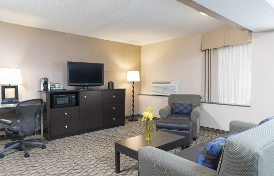 Suite Holiday Inn CHICAGO-ELK GROVE