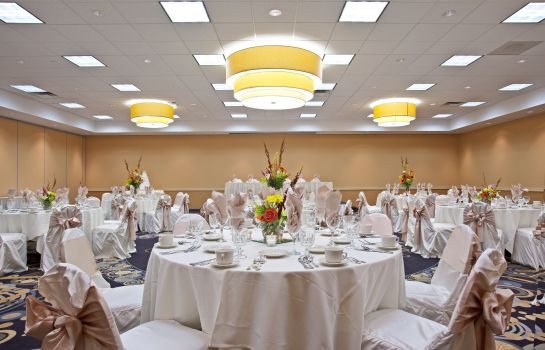 Sala konferencyjna Holiday Inn CHICAGO-ELK GROVE