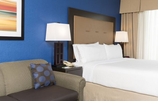 Zimmer Holiday Inn CHICAGO-ELK GROVE