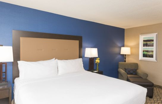 Chambre Holiday Inn CHICAGO-ELK GROVE