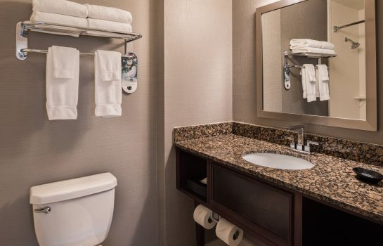 Zimmer Holiday Inn & Suites CHICAGO O'HARE - ROSEMONT