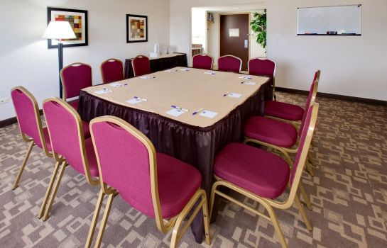 Conference room Holiday Inn Express CHICAGO-SCHAUMBURG