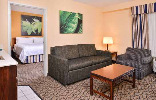 Suite Holiday Inn & Suites CHICAGO-DOWNTOWN