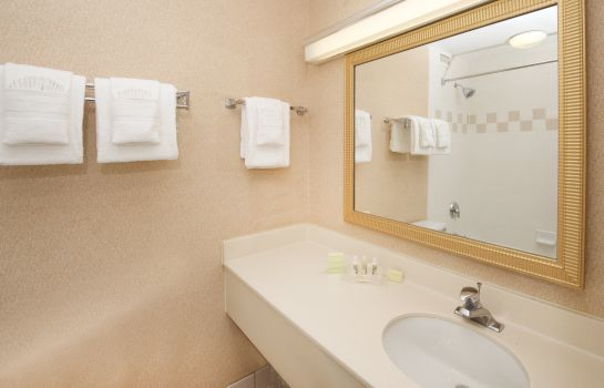 Informacja Holiday Inn & Suites CHICAGO-DOWNTOWN
