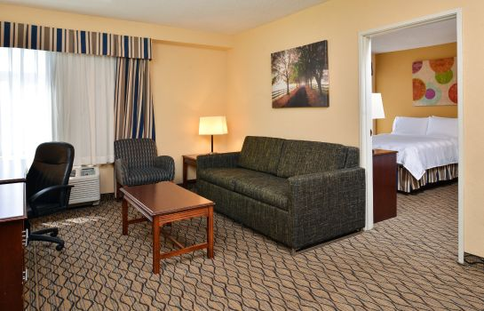 Info Holiday Inn & Suites CHICAGO-DOWNTOWN