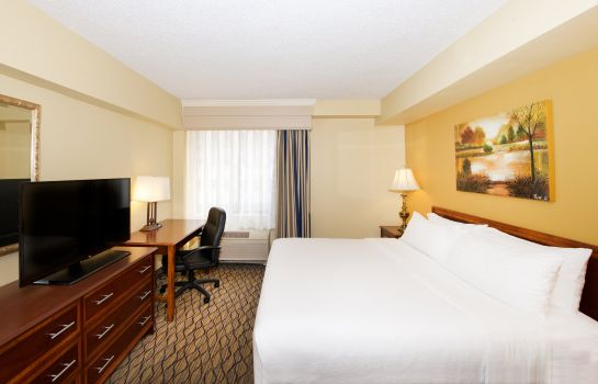 Zimmer Holiday Inn & Suites CHICAGO-DOWNTOWN