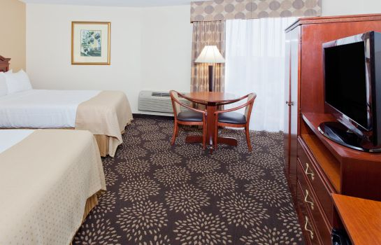 Zimmer Holiday Inn CHARLESTON-RIVERVIEW