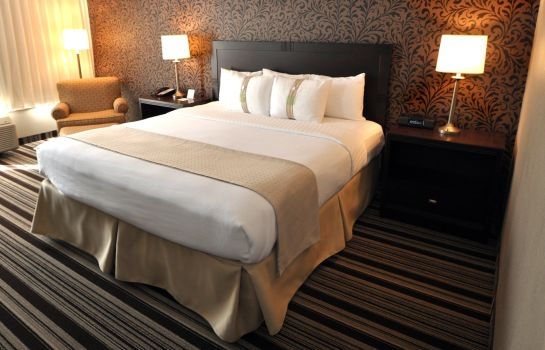 Suite Holiday Inn CLEVELAND-MAYFIELD