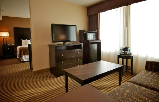 Suite Holiday Inn CHARLOTTE-CENTER CITY