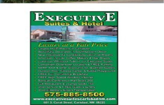 Information EXECUTIVE SUITES AN