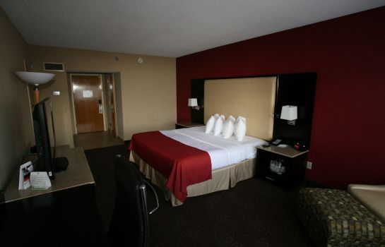Habitación Holiday Inn CLINTON - BRIDGEWATER