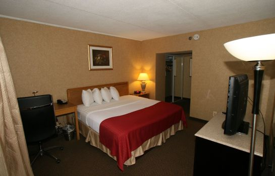 Room Holiday Inn CLINTON - BRIDGEWATER