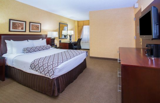 Room Crowne Plaza DENVER AIRPORT CONVENTION CTR