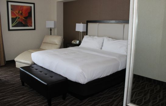 Room Holiday Inn DES MOINES-AIRPORT/CONF CENTER