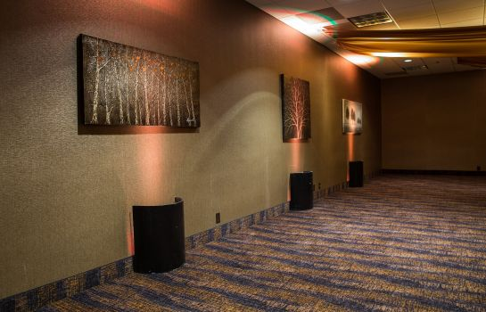 Conference room Holiday Inn DES MOINES DTWN - MERCY AREA