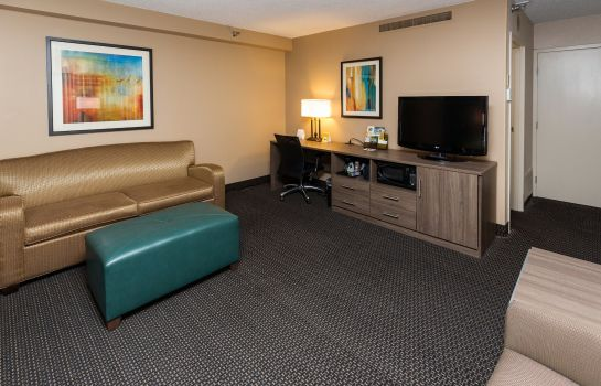 Zimmer Holiday Inn DES MOINES DTWN - MERCY AREA