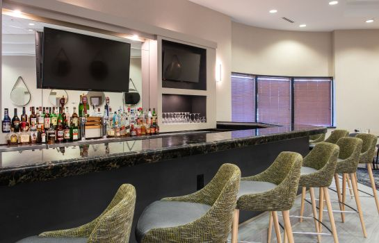 Hotel-Bar Delta By Marriott Detroit Novi