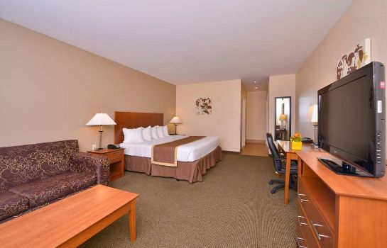 Zimmer BEST WESTERN WILLIAMSPORT IN