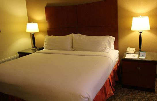Zimmer Holiday Inn MEMPHIS-DOWNTOWN (BEALE ST.)