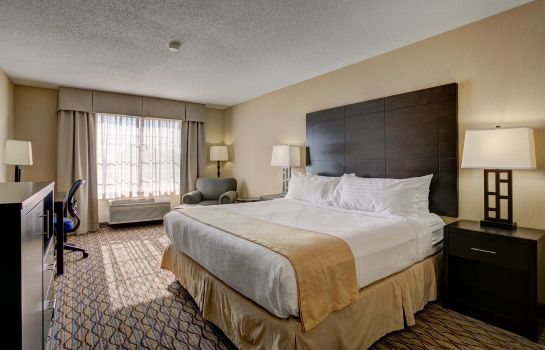Zimmer Holiday Inn Hotel & Suites MILWAUKEE AIRPORT