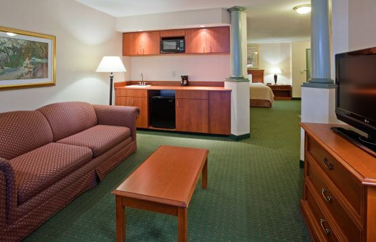Suite Holiday Inn & Suites MADISON WEST