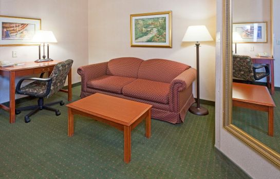 Zimmer Holiday Inn & Suites MADISON WEST