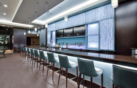 Bar del hotel Holiday Inn VIRGINIA BEACH - NORFOLK