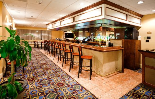 Hotel-Bar Holiday Inn RALEIGH (CRABTREE VALLEY MALL)