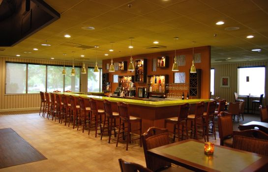 Hotel-Bar Holiday Inn ROANOKE-TANGLEWOOD-RT 419&I581