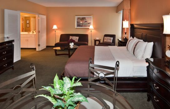 Suite Ramada Plaza Rochester Airport