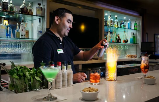 Hotel bar Holiday Inn SAN ANTONIO-DWTN (MARKET SQ)