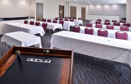 Sala konferencyjna Holiday Inn Express ST. LOUIS AIRPORT- RIVERPORT