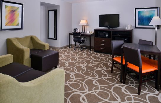 Zimmer Holiday Inn Express ST. LOUIS AIRPORT- RIVERPORT