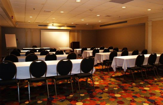 Conference room Holiday Inn ST. LOUIS-AIRPORT