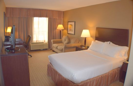 Room Holiday Inn ST. LOUIS-AIRPORT