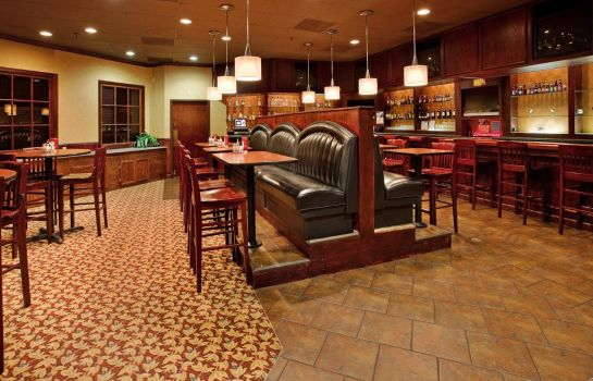Hotel-Bar Holiday Inn ST. LOUIS-SOUTH COUNTY CENTER