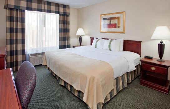 Suite Holiday Inn ST. LOUIS-SOUTH COUNTY CENTER