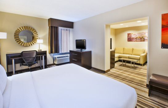Suite Holiday Inn WASHINGTON-DULLES INTL AIRPORT