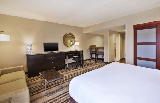 Zimmer Holiday Inn WASHINGTON-DULLES INTL AIRPORT