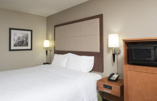 Habitación Hampton Inn Ann Arbor - North