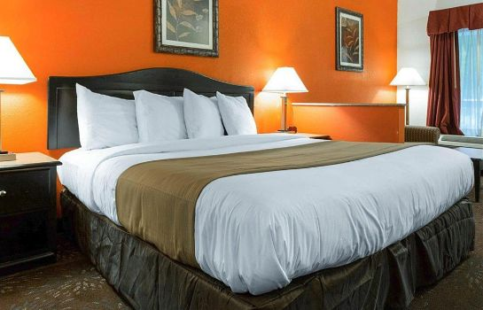 Suite Quality Inn and Suites Austell